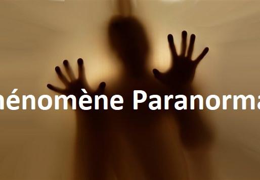 👽 Phénomène paranormal : une feuille en suspension ou l'esprit de Richemont en Charente