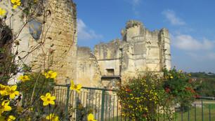 🗿 Château médiéval de Montguyon