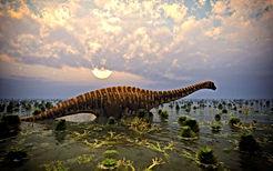 d09134dfae_50144446_sauropode-satori-fot
