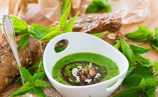 🍲 Soupe d'escargots aux orties sauvages