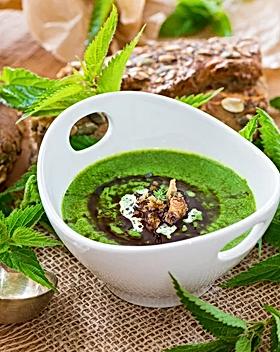 soupe-d-orties-sauvages-et-escargots-pet