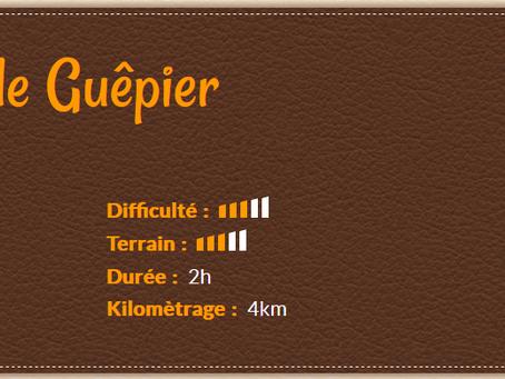 🧭 Tèrra Aventura 3 : Un drôle de Guêpier
