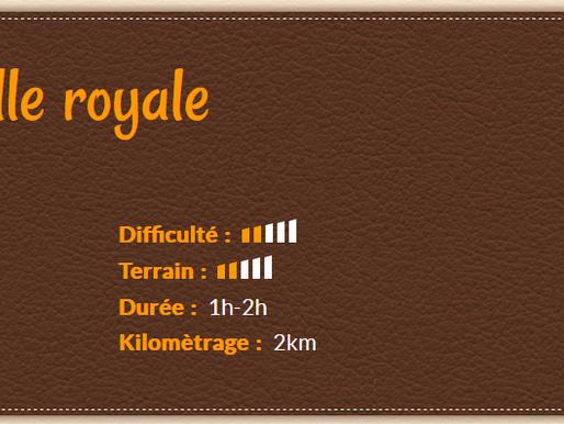🧭 Tèrra Aventura 4 : La cornuelle royale