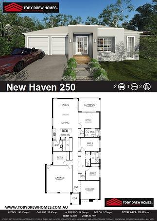 New Haven 250 single - 2G 4B 2BA.jpg