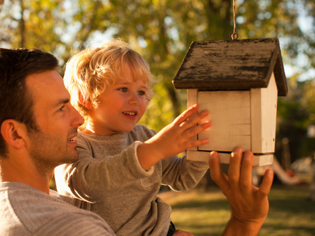 Bird Nesting—What is it and is it right for your family?