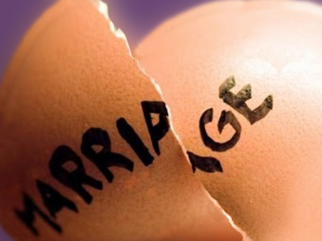 Divorce And Your Egg Nest