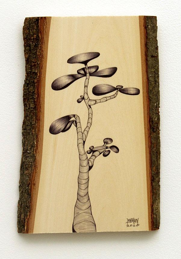 2010-12-ed-lebrun_succulent