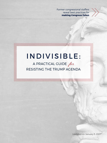 indivisible guide pix.jpg
