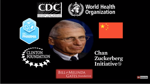 fauci orgs.png