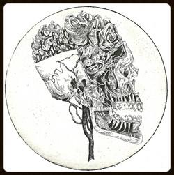 Anatomical_6 Hyacinth Crown