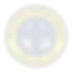 logo-presbiteriana-carolina-tran.png