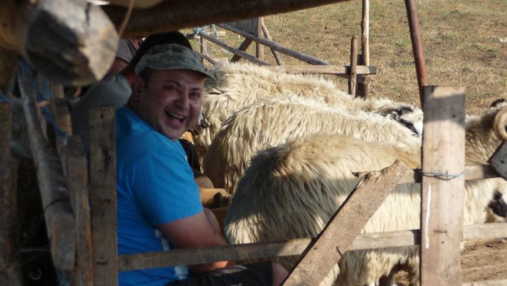 Dan with sheep 2.JPG