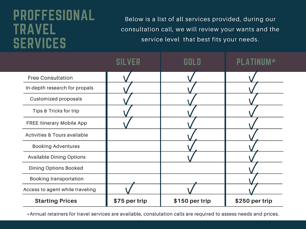 Travel Services graphic