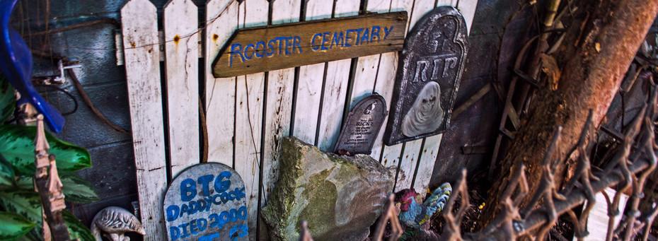 rooster cemetery.jpg