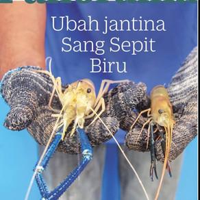 UBAH JANTINA SANG SEPIT BIRU