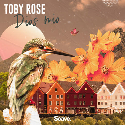 Toby Rose releases Danish tropical vibes with a Latin attitude