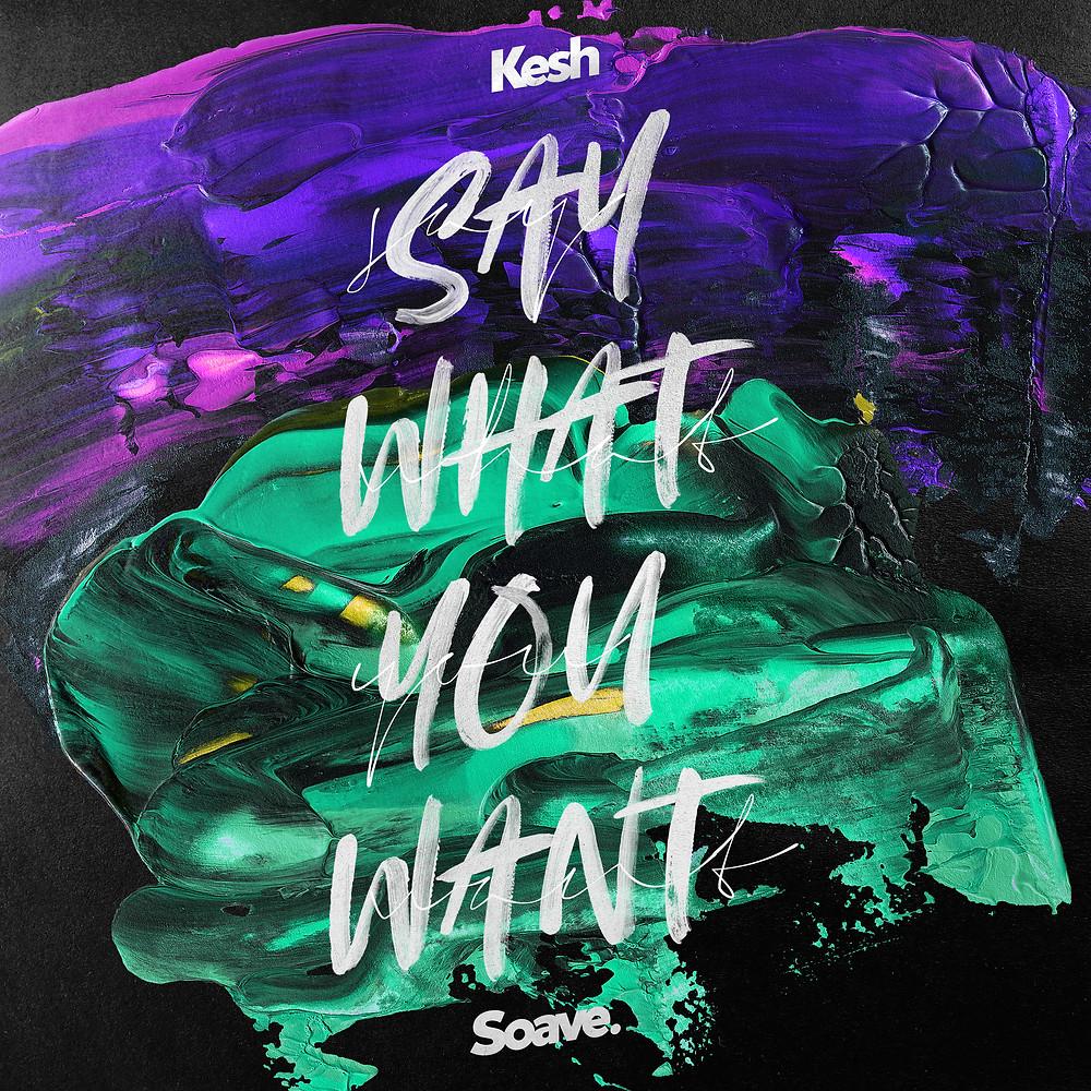 kesh say what you want artwork
