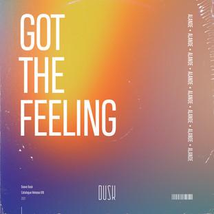 Alande - Got The Feeling.jpg