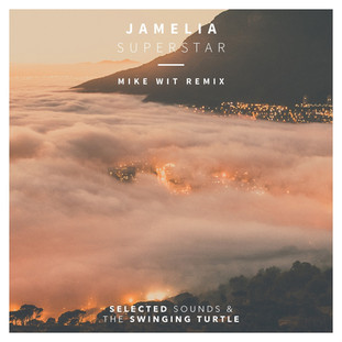 jamelia superstar mike wit remix