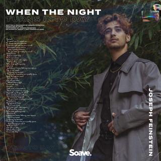 Joseph Feinstein - When The Night Turns
