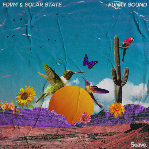 FDVM & Solar State bring you their Funky Sound