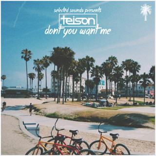 Selected Sounds Teison - Don't You Want Me (Original Mix)