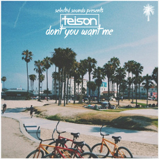Selected Sounds Teison - Don't You Want Me (Original Mix)