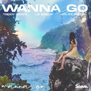 Wanna Go.jpg