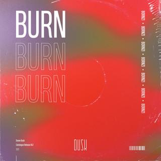 BORNZI - Burn.jpg