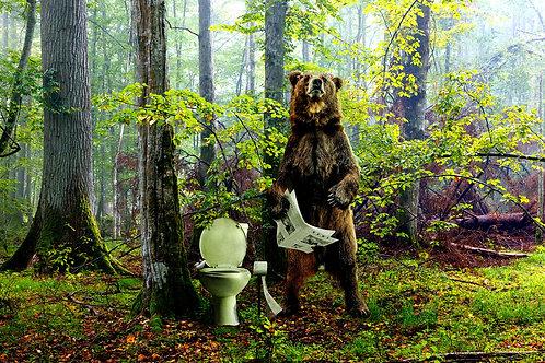 Does a Bear?