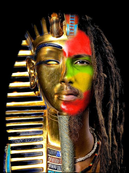 Ancient DNA