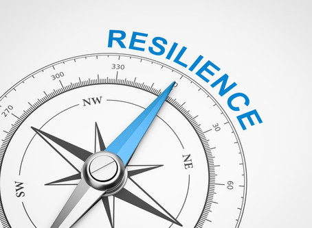 Getting to grips with resilience