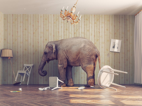 Practical advice for taming those rampaging elephants in the room