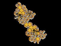 honey comb bees_adobespark_adobespark.png