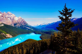 Peyto Lake Icefields Parkway audio driving tour