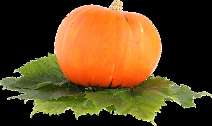 pumpkin_PNG9384.png
