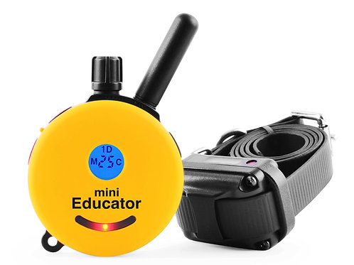 Mini Educator Electronic Training Collar (ET-300)