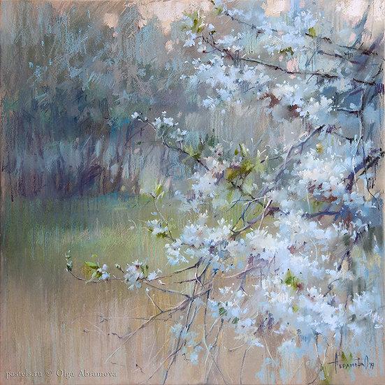Вишни. Сумерки Cherry trees. Dusk 50x50. 2019