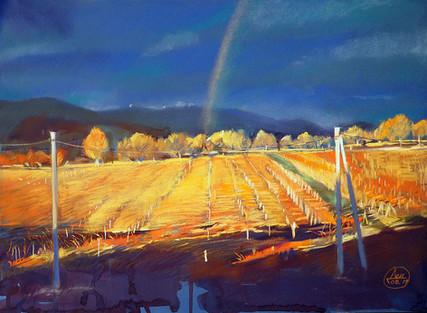 65. Радуга над виноградником / The vineyard rainbow 40x55 cm, 2019