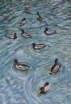 17-2. Ducks in the pond 39x27 cm, 2020