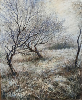 057 Frost / Frost 50x40 cm, 2021