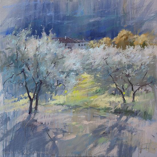 Солнце в оливах 2 The sun and olive trees 2 70x70.