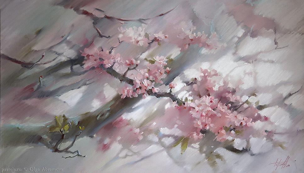 Розовая Сакура Sakura 57x88. 2014