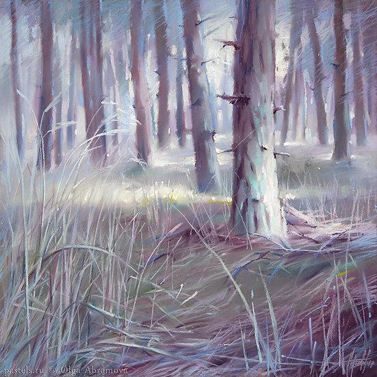 Игольчатый лес Needle wood 48x48. 2017