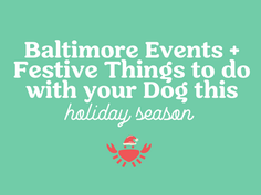 Baltimore Events and Other Festive Things to Do With Your Dog this Holiday Season