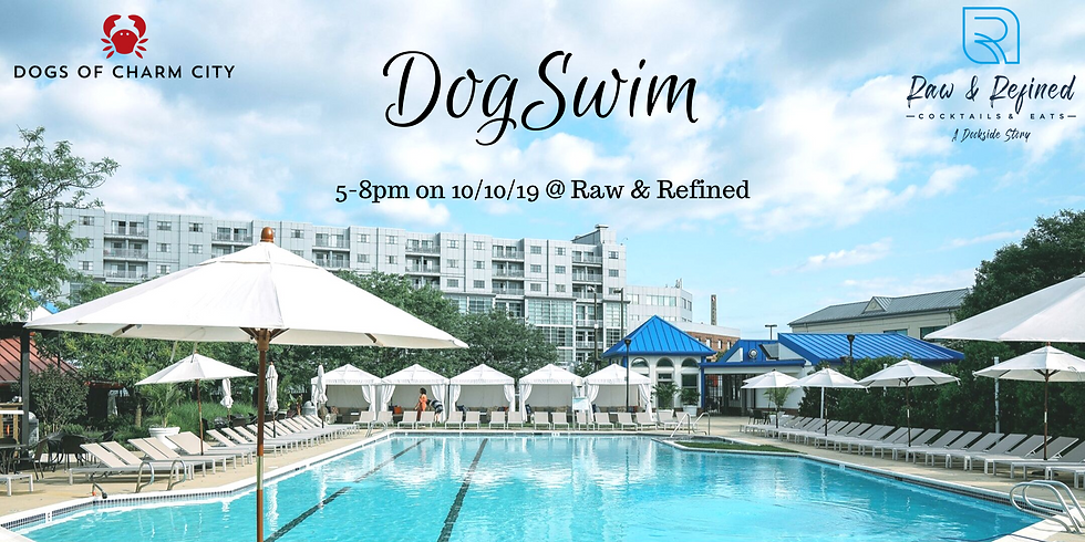 Raw & Refined Dog Swim