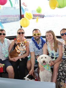 Dogs of Charm City Canine Cruise with Baltimore Water Taxi