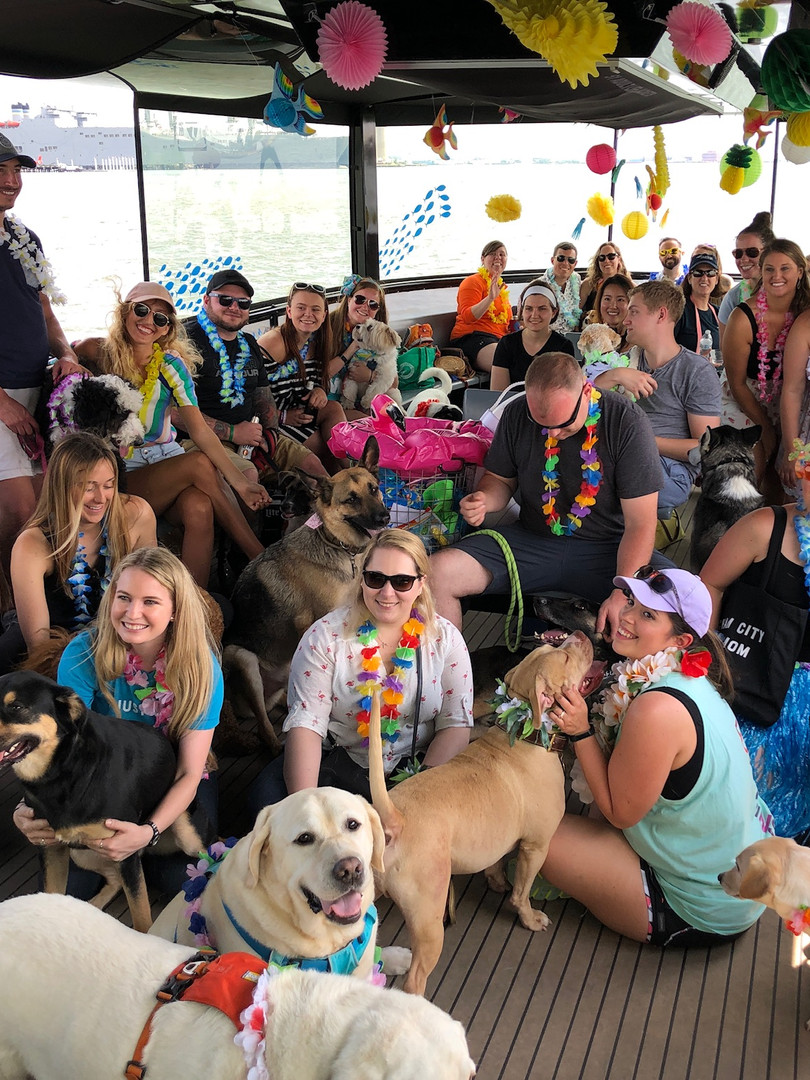 Dogs of Charm City Canine Cruise