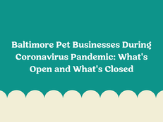 Baltimore Pet Businesses During Coronavirus Pandemic: What's Open and What's Closed