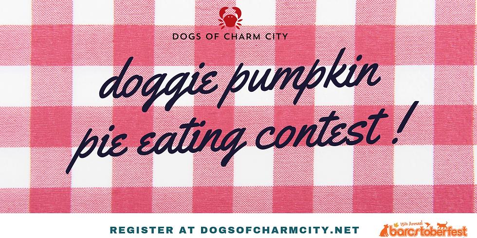 Doggie Pumpkin Pie Eating Contest